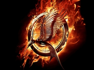 The Hunger Games: Catching Fire, Big Fire