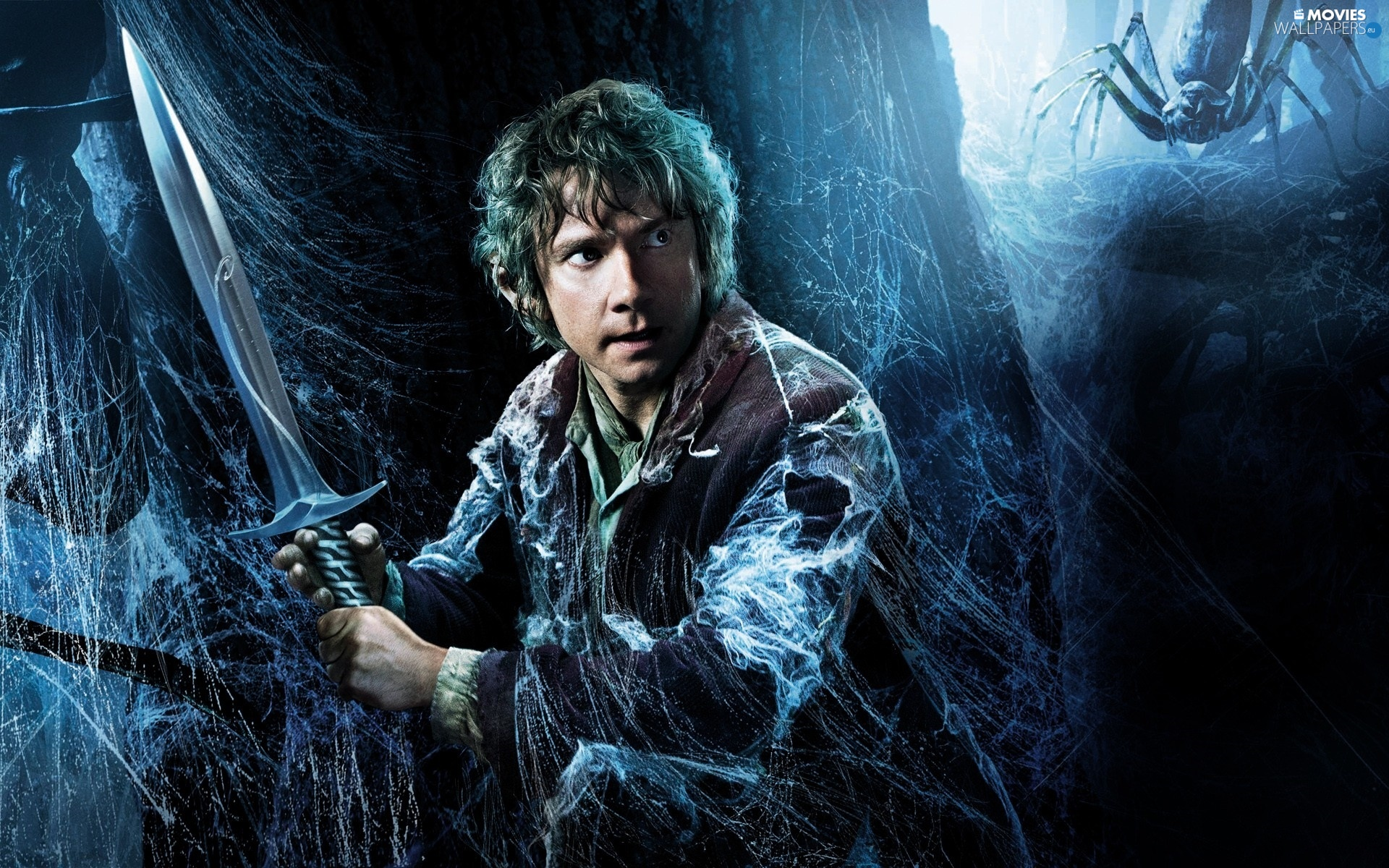 Martin Freeman, Hobbit The Desolation of Smaug, sword, Web, Bilbo Baggins, The Hobbit: The Desolation of Smaug